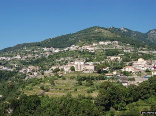 Conoscenze locali per la conservazione del paesaggio tradizionale mediterraneo